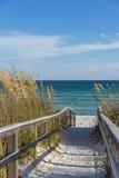 Voetpad aan strand in paradijs Stock Foto's
