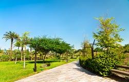 Voetpad in Al Shaheed Park, de Stad van Koeweit royalty-vrije stock afbeeldingen
