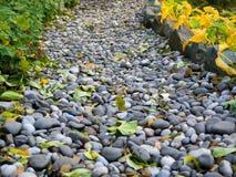 Voetpad in de herfstpark, van kiezelstenen wordt gemaakt die Stock Fotografie