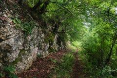 Voetpad in de meest greenforest en grote steenrotsen dichtbij Royalty-vrije Stock Foto