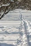 Voetpad in de sneeuw in een snow-covered appelboomgaard royalty-vrije stock afbeelding