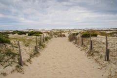Voetpad door Dune du Pyla Stock Afbeelding