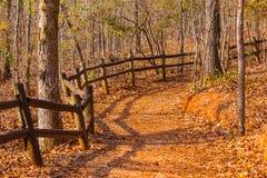 Voetpad en struikgewas in het Park van de Staat van de Voorzienigheidscanion, Georgië, de V.S. Stock Foto