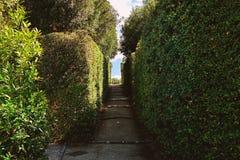 Voetpad in het park in Florence royalty-vrije stock fotografie