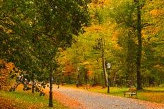 Voetpad in Maksimir-park in de herfst, Zagreb, Kroatië, Europa royalty-vrije stock foto