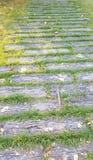 Voetpad in park Stock Fotografie
