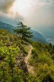 Voetpad of sleep op een steile berghelling Stock Afbeeldingen