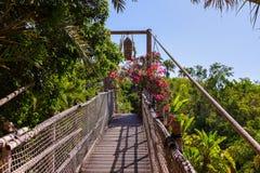 Voetpad in wildernis - de Canarische Eilanden van Tenerife Stock Foto