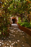 Voetpad in wildernis - de Canarische Eilanden van Tenerife Royalty-vrije Stock Foto's