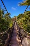 Voetpad in wildernis - de Canarische Eilanden van Tenerife Stock Afbeeldingen