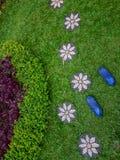 Voetstap in het gras royalty-vrije stock afbeelding