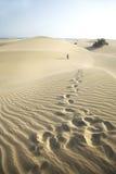 Voetstappen bij de woestijn Royalty-vrije Stock Fotografie