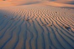 Voetstappen bij de woestijn Stock Foto