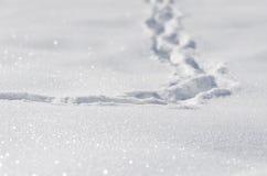 Voetstappen in de sneeuw royalty-vrije stock afbeeldingen