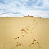 Voetstappen die tot de bovenkant van Dune du Pilat, Frankrijk leiden Stock Fotografie