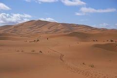 Voetstappen door de Sahara stock foto's