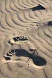 Voetstappen in een zand stock afbeeldingen