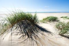 Voetstappen in het zand royalty-vrije stock afbeelding