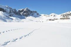 Voetstappen op de sneeuw stock foto's