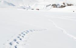 Voetstappen op de sneeuw stock afbeeldingen