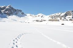 Voetstappen op de sneeuw stock fotografie