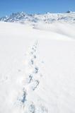 Voetstappen op de sneeuw stock afbeelding