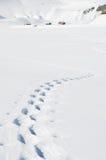 Voetstappen op de sneeuw royalty-vrije stock fotografie