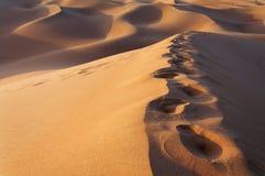 Voetstappen op de zandduinen stock foto's