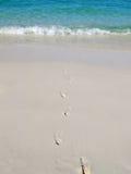 Voetstappen op het strand royalty-vrije stock foto's
