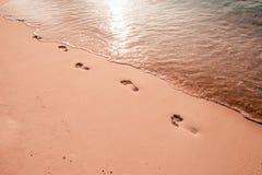 Voetstappen op het strand door het overzees in de zomer royalty-vrije stock afbeelding