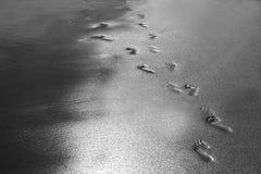 Voetstappen op het strand Seychellen royalty-vrije stock foto's