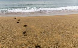 Voetstappen op het zand naar het overzees royalty-vrije stock foto