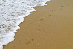 Voetstappen op strandoever Stock Foto's