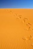 Voetstappen op zandduinen Royalty-vrije Stock Foto's