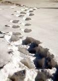 Voetstappen in sneeuw stock foto