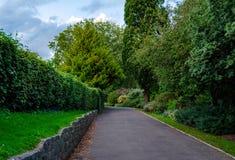 Voetweg in het park in de middag stock afbeeldingen