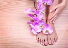 Voetzorg. Pedicure met roze orchideebloemen op houten royalty-vrije stock afbeeldingen