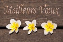 Voeux de Meilleurs, significando recuerdos en francés Imágenes de archivo libres de regalías