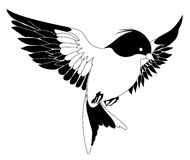 Vogel stock abbildung