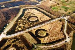 Vogel-Ansicht-Felder im goldenen Herbst Lizenzfreie Stockbilder