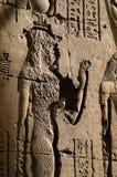 Vogel auf ägyptischer Hieroglyphe   Stockbild