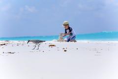 Vogel auf dem Strand und dem Jungen, die Sandburg machen Stockbilder