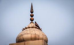 Vogel auf einem Helm des roten Forts, Delhi - Indien Stockbild