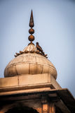 Vogel auf einem Helm des roten Forts, Delhi - Indien Lizenzfreie Stockbilder