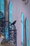 Vogel auf Haus stockfotografie