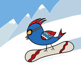 Vogel auf Snowboard Stockfotografie
