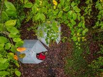 Vogel-Augenansicht eines Campingplatzes lizenzfreies stockfoto