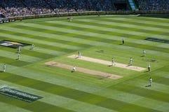 Vogel-Augenansicht an Melbourne-Cricketplatz Stockfotografie