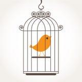 vogel in birdcage. Royalty-vrije Stock Foto