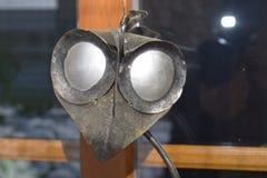 Vogel birdy con los ojos abiertos del hierro extraño Imagen de archivo libre de regalías